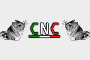 Partecipa al CNC a Bologna